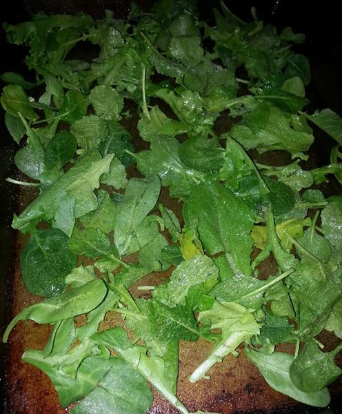 Organic Girl baby Kale bakes into garlic kale chips.